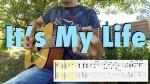 Bon Jovi — It's My Life, finger tab