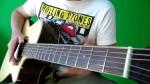 Полный видеокурс игры на акустической гитаре от Василия Пастухова