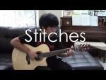 Shawn Mendes — Stitches (Hajun Lee), finger tab (PDF)