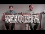Shawn Mendes — Senorita, finger tab
