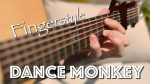 Tones and I — Dance Monkey (Gareth Evans), finger tab (PDF)