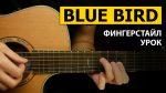 OST Naruto Shippuden — Blue Bird, finger tab (PDF)